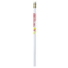 BIC Evolution Pencil